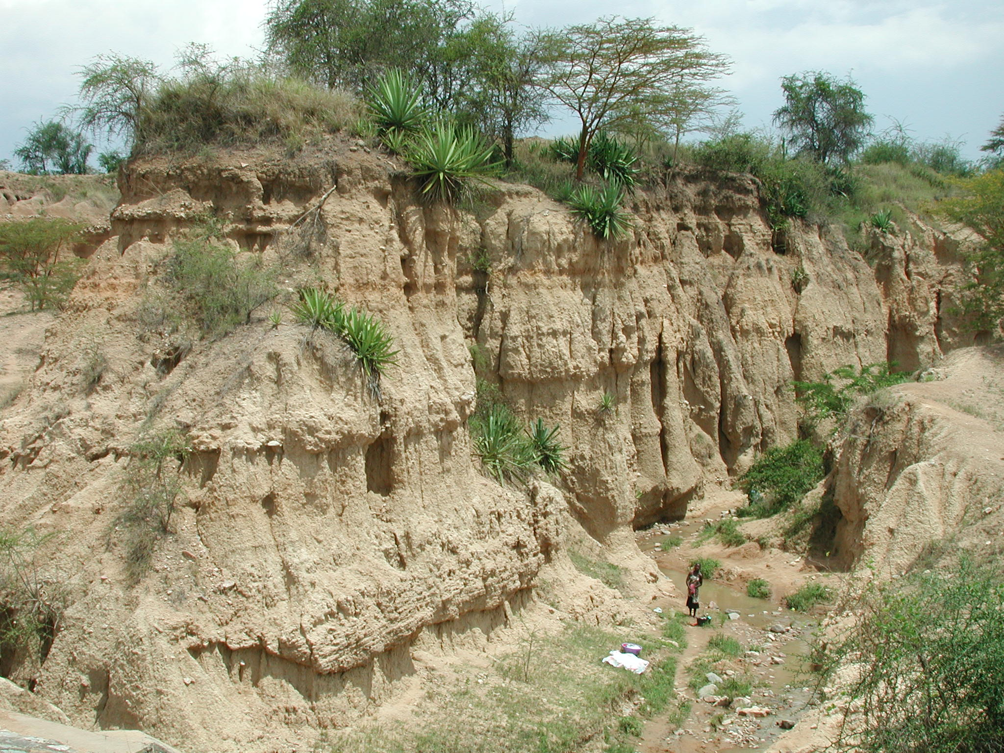 Sensing soil condition project lake victoria basin for Soil erosion causes