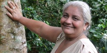 Farmer Doña Paula on her coffee holding in Waslala, Nicaragua. The trees – mostly 'laurel' (Cordia alliodora) — provide shade, habitat for beneficial insects, regulate water and improve soil fertility. Photo by Cathy Watson/ICRAF